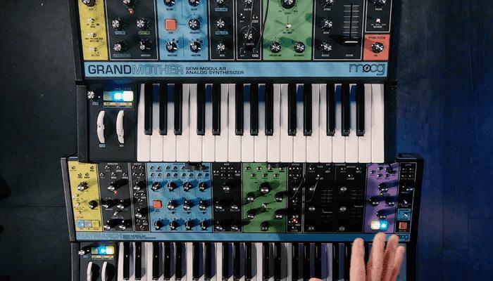 Sintetizador Moog Grandmother 1
