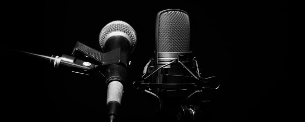 Micrófono dinámico y condensador.